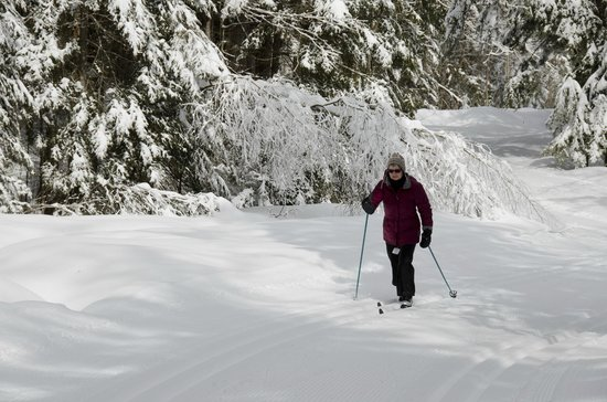 Lapland Lake Cross Country Ski Center: Best skiing of the year