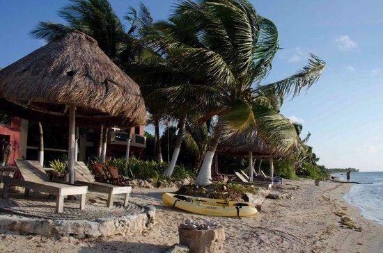 Sin Duda Villas: beach
