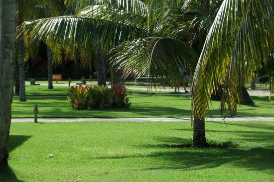 Patachocas Beach Resort: áreas do hotel