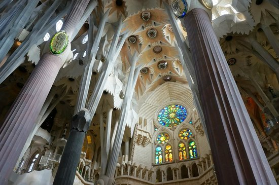 Sagrada Família : Sagrada Familia - nave ceiling. Notice how the columns expand into branches to hold up the ceili