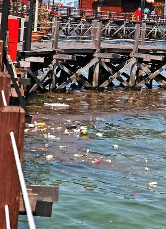 Gayana Eco Resort: Trash
