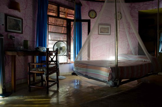 Posada Ecologica Dos Ceibas: Room Mariposa