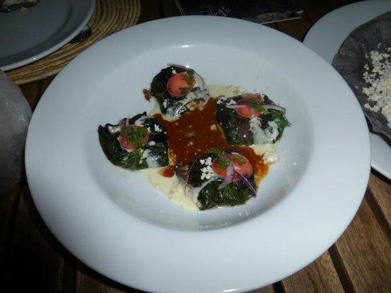 Casa Oaxaca  Restaurant: Hoja Santa y Queso