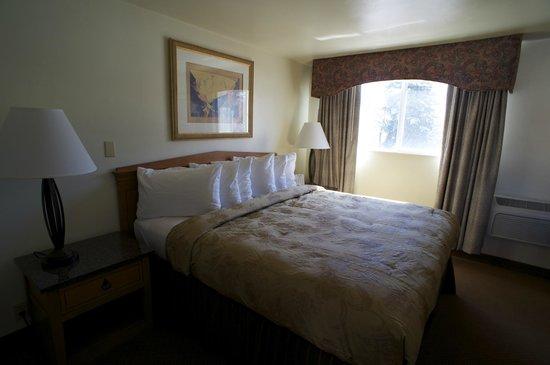 Parkview Inn Motel: King room
