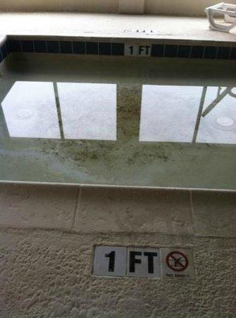 Rodeway Inn & Suites: 1ft pool nasty