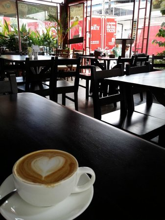 Rain Forest Cafe y Restaurant: Mi amor - a quiet weekday morning coffee.