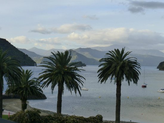 Harbour View Motel Picton: view from balconly