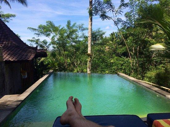 DD Ubud Villa : Pool