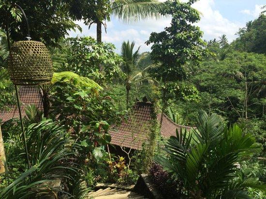 DD Ubud Villa : Blick von oben auf die Bungalows