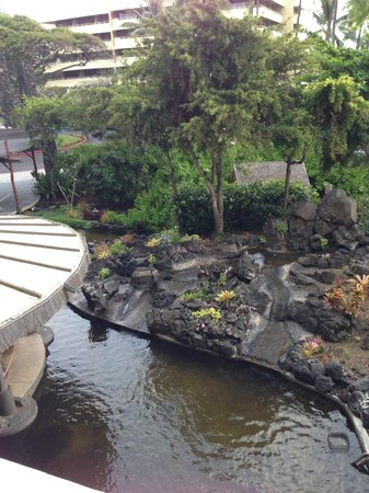 Royal Kona Resort : View from Room 211