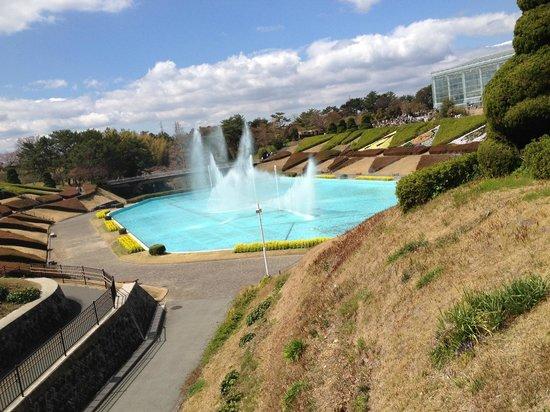 Hamamatsu Flower Park: 噴水ショー