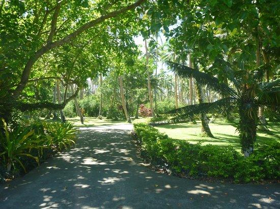 Namale the Fiji Islands Resort & Spa: Grounds