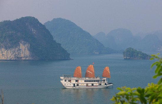 Vietnam Tour 365 - Private Day Tours