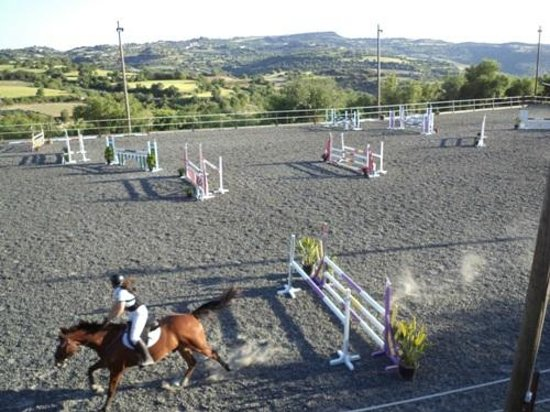 Paphos District, Cyprus: Jumping arena