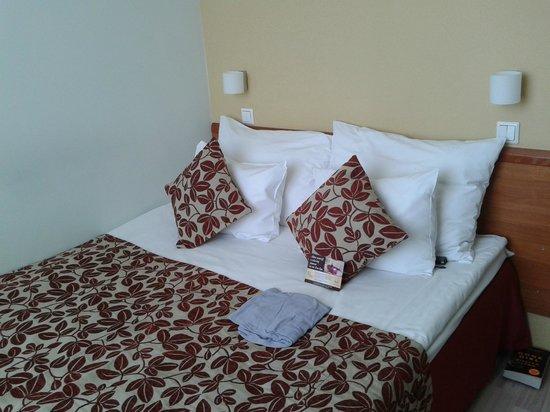 Kreutzwald Hotel Tallinn: My room