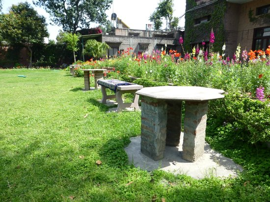 Mrs. Bhandari's Guesthouse: A great area to sit outside, relax and enjoy the scenery