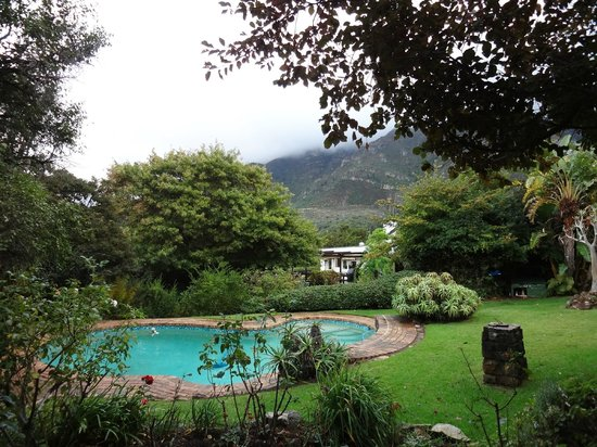 Klein Bosheuwel Guest House : Pool and grounds