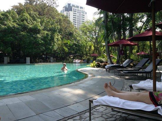 Swissotel Nai Lert Park: pool area
