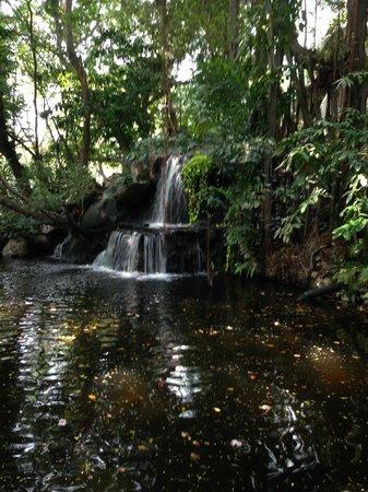 Swissotel Nai Lert Park: waterfall in the garden