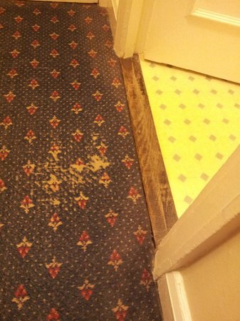 The Lion Hotel Shrewsbury by Compass Hospitality: carpet worn