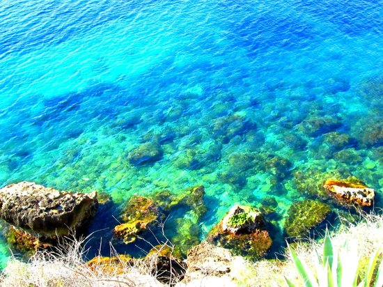 Pristine waters picture of trh jardin del mar santa for Aparthotel jardin del mar mallorca