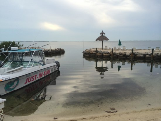 Amoray Dive Resort: La plage