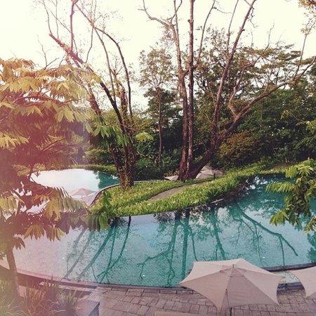 Capella Singapore: Pool