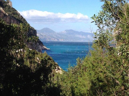Escursioni e Trekking Dolceluna - Day Tours