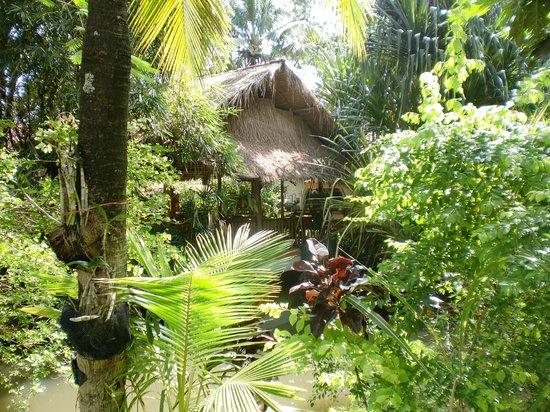 Secret Garden Chiang Mai : Walking around