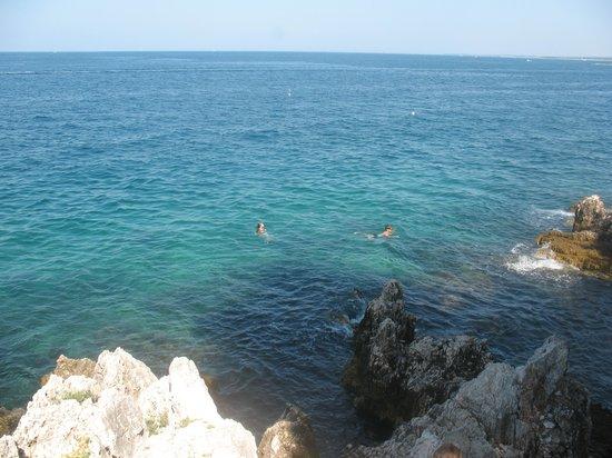 Hotel Delfin: дикий пляж