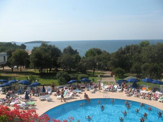 Hotel Delfin: вид на море и бассейн из холла отеля