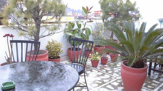 Annapurna Guest House: very nice rooftop garden