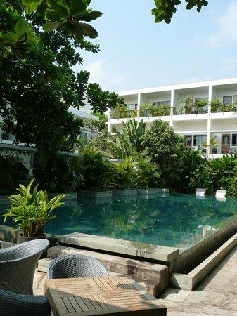 The Plantation - urban resort & spa: La fantastique piscine
