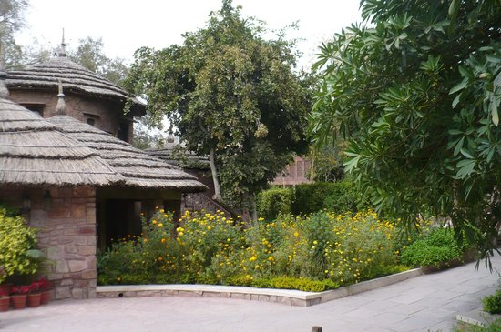 Ajit Bhawan : our bogus village hut