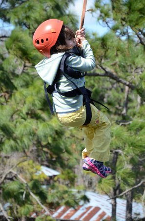 Gatorland: our four and a half year old ziplining