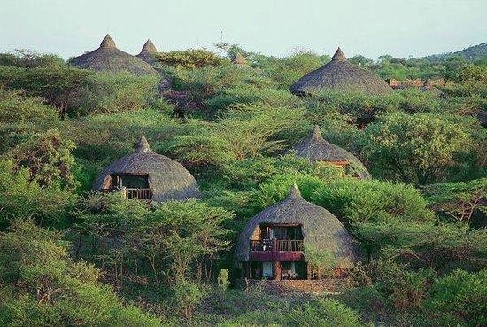 Serengeti Serena Safari Lodge: Hotel in the wilderness