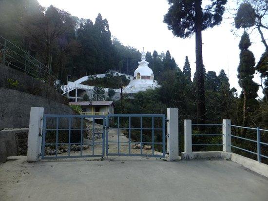Japanese Peace Pagoda: Peace  pagoda from  the foothill