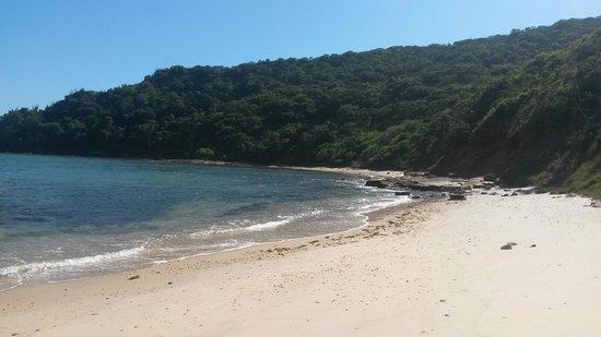 Tartaruga Beach : .