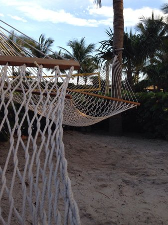 Solara Surfside Resort : Enjoy the hammocks in the garden area at Solara Surfside