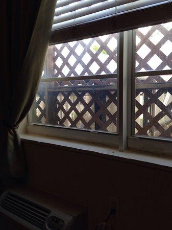 The Beach Plaza Hotel: Der Ausblick aus dem Zimmer 111