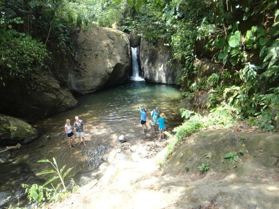 Punta Gabriela: Jungle Waterfall
