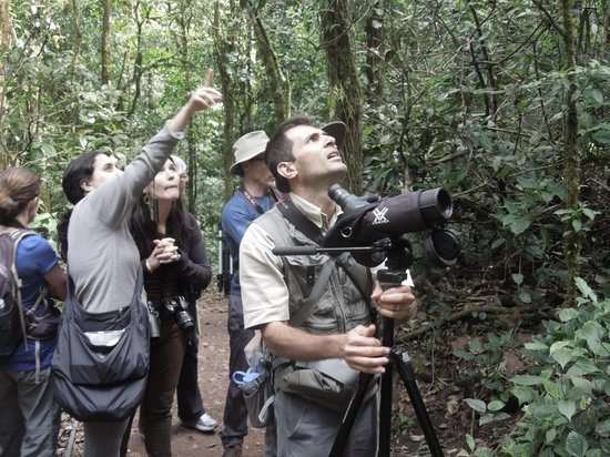 Pasion Costa Rica: The Bird Whisperer