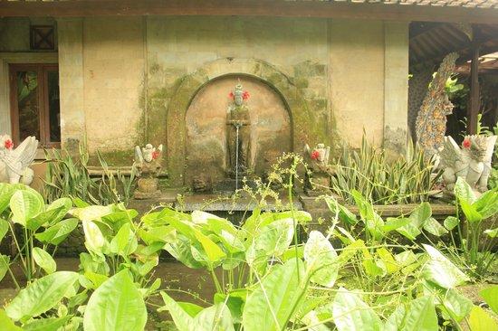 Bebek Tepi Sawah Villas & Spa: Pond