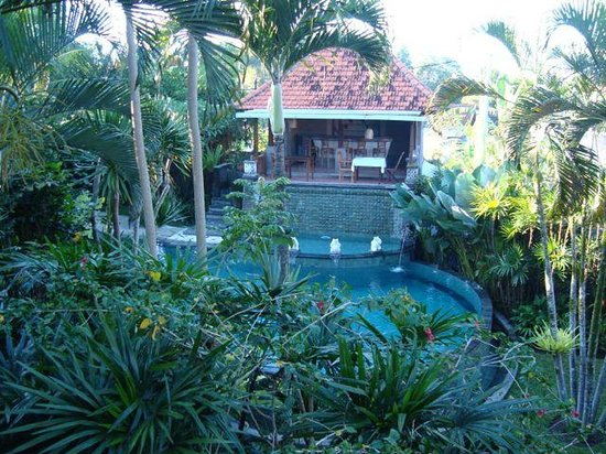 Villa Sonia : Pool