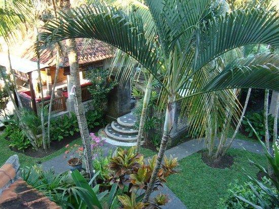 Villa Sonia : Lobby