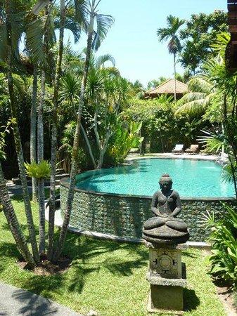 Villa Sonia : Pool view