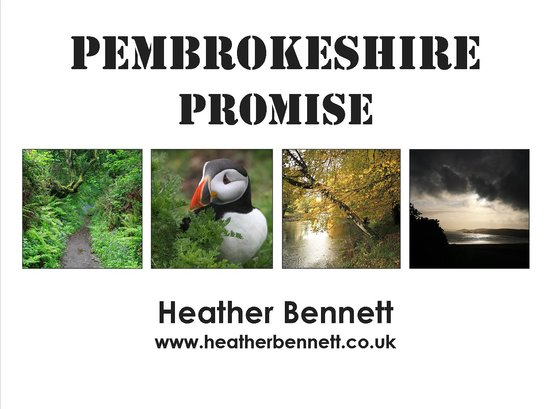 Raul Speek Gallery: Heather's latest book.  In depth images of Pembrokeshire in all seasons.