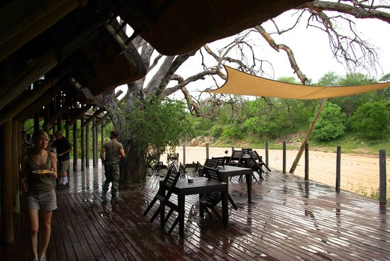 Rhino Post Safari Lodge: terrasse