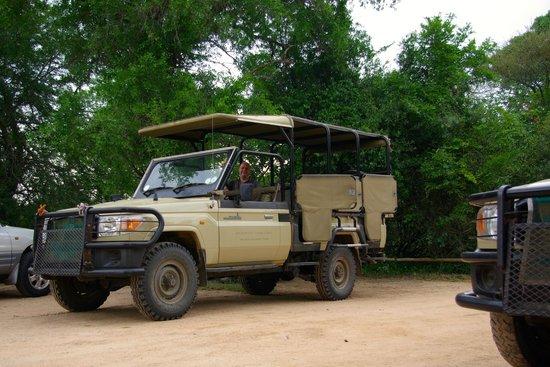 Rhino Post Safari Lodge : safari