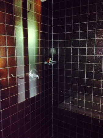 Khaolak Laguna Resort: Shower area